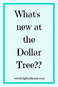 What's new at the Dollar Tree